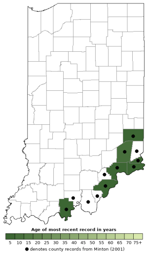 Distribution map of Streamside Salamander (Ambystoma barbouri)