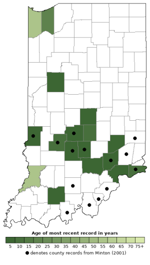 Distribution map of Jefferson's Salamander (Ambystoma jeffersonianum)