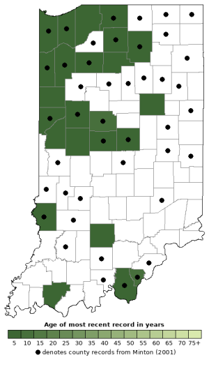 Distribution map of Eastern Tiger Salamander (Ambystoma tigrinum)