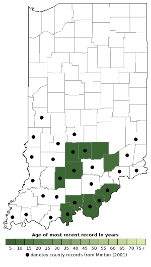 Distribution map of Eastern Wormsnake (Carphophis amoenus)