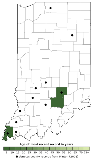 Distribution map of Ouachita Map Turtle (Graptemys ouachitensis)