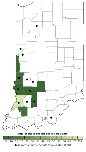 Distribution map of Prairie Kingsnake (Lampropeltis calligaster)