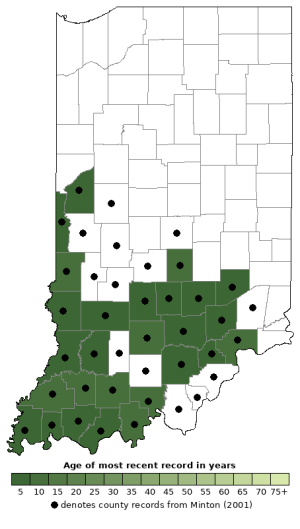 Distribution map of Southern Leopard Frog (Lithobates sphenocephalus)
