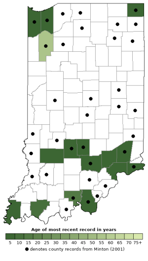 Distribution map of Eastern Newt (Notophthalmus viridescens)