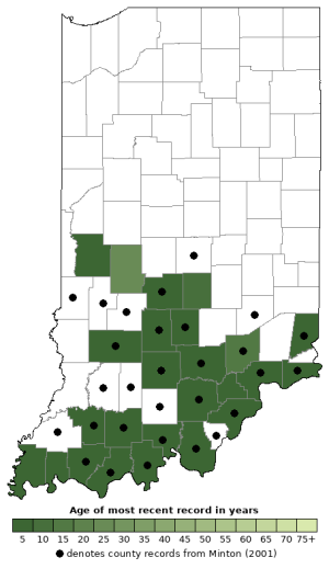 Distribution map of Rough Greensnake (Opheodrys aestivus)