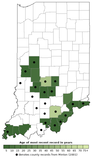 Distribution map of Northern Zigzag Salamander (Plethodon dorsalis)