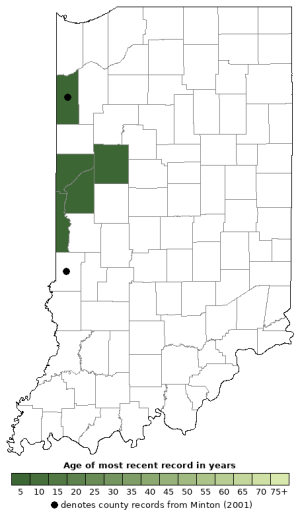 Distribution map of Plains Leopard Frog (Rana blairi)