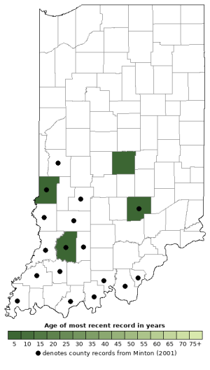 Distribution map of Eastern Spadefoot (Scaphiopus holbrookii)