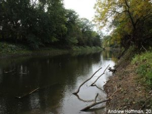 Degraded riparian Habitat from Newton County